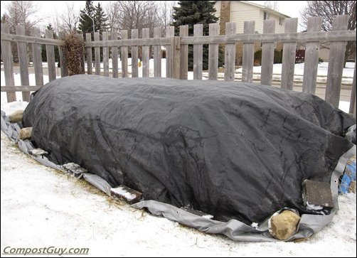 Winter Worm Bed
