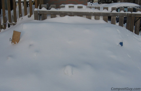 Winter Composting Bin Buried in Snow